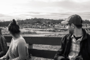 Riding in a Hayride to a Pumpkin Patch