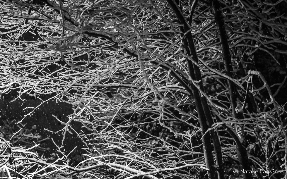 SnowyNight (1 of 1)-2