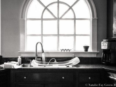 still life photograph of infant bath preparation