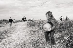 Girl picking pumpkin in field