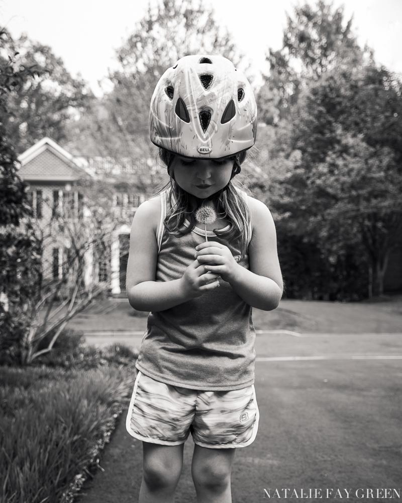 little girl holding dandelion in driveway