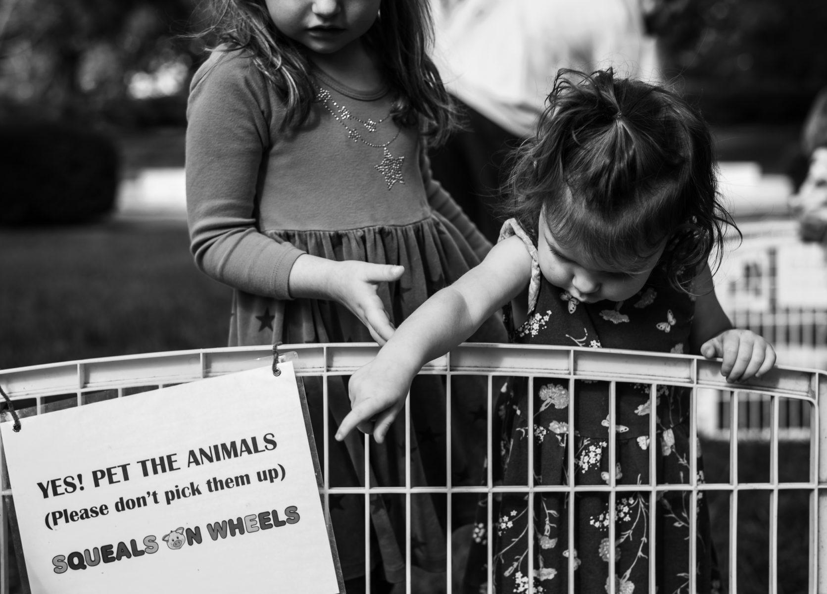 sisters at petting zoo