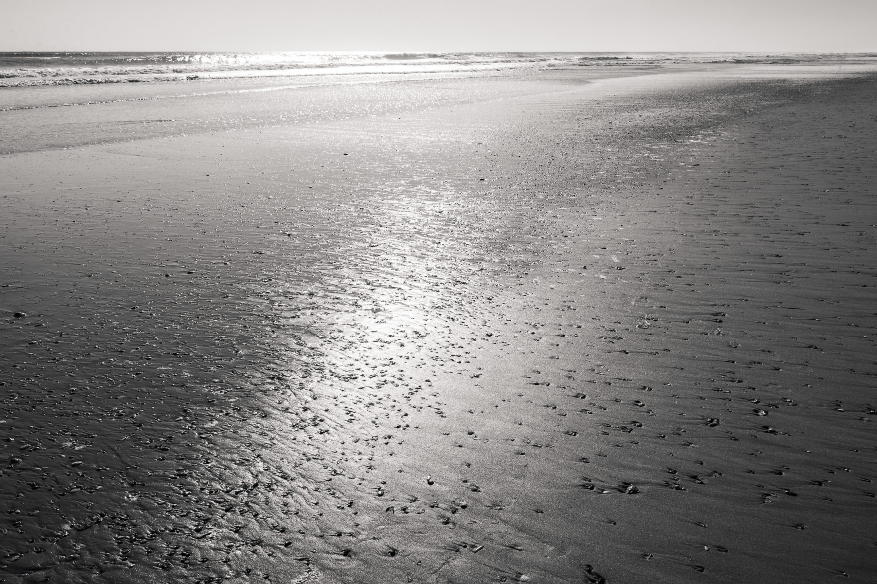 beach at Corolla North Carolina in the offseason