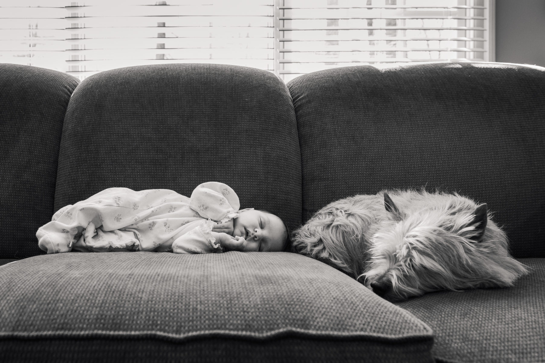 baby and dog sleeping on the sofa